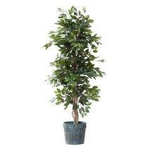 Arboles y plantas verdes