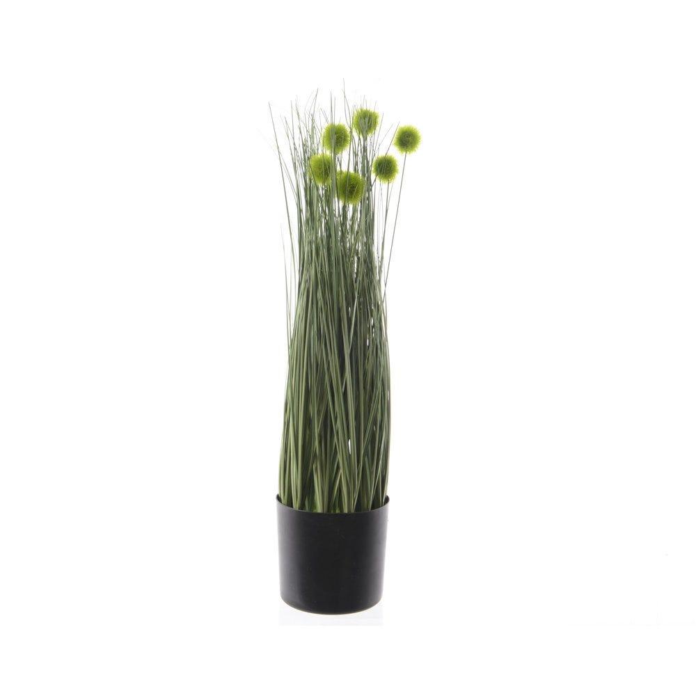 Arboles y plantas con flores
