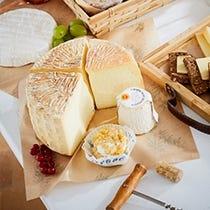 Envases quesos