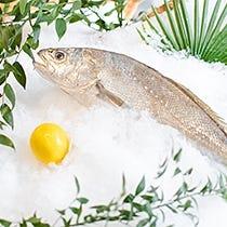 Envases pescadería