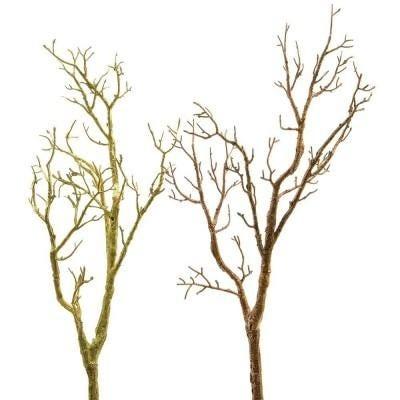 Ramas y árboles