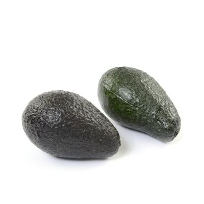 Aguacate 6x10 cm surtido-